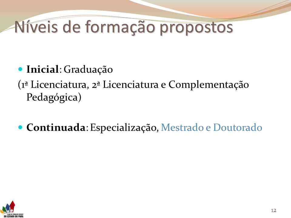 Níveis de formação propostos Inicial: Graduação (1ª Licenciatura, 2ª Licenciatura e Complementação Pedagógica) Continuada: Especialização, Mestrado e Doutorado 12