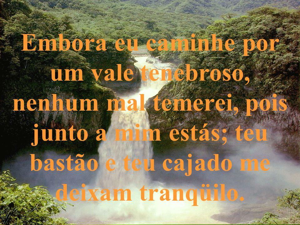 Embora eu caminhe por um vale tenebroso, nenhum mal temerei, pois junto a mim estás; teu bastão e teu cajado me deixam tranqüilo.