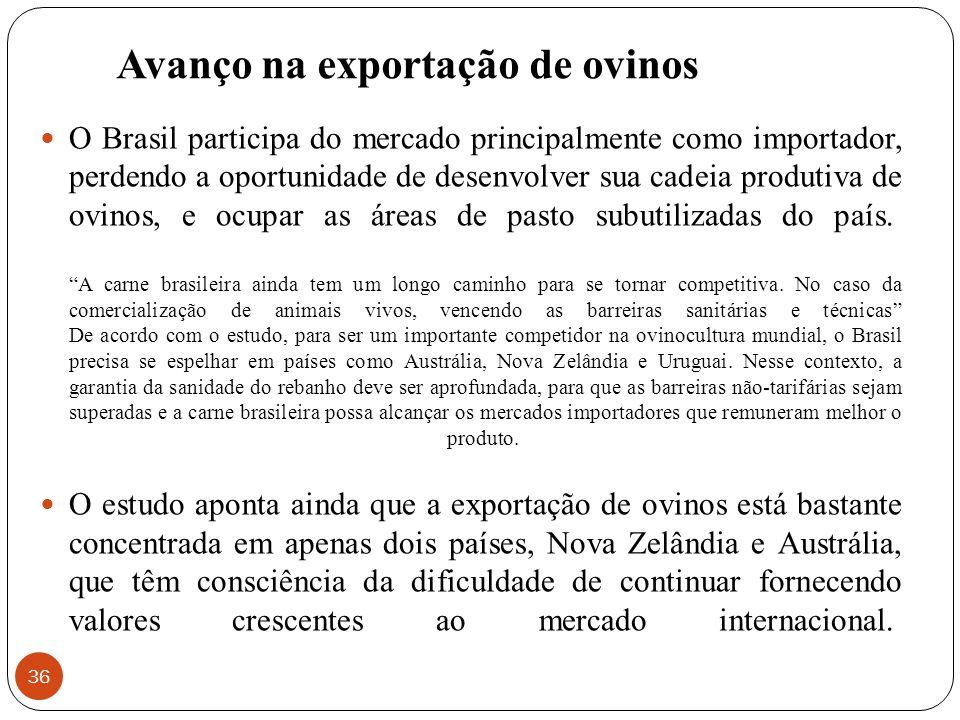 Avanço na exportação de ovinos 36 O Brasil participa do mercado principalmente como importador, perdendo a oportunidade de desenvolver sua cadeia prod