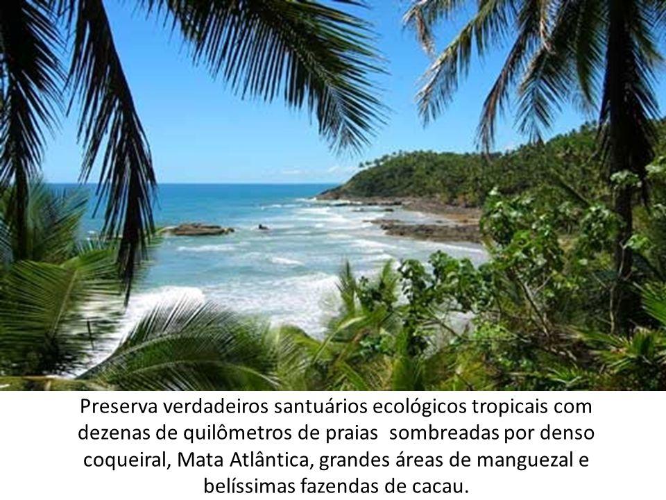 Preserva verdadeiros santuários ecológicos tropicais com dezenas de quilômetros de praias sombreadas por denso coqueiral, Mata Atlântica, grandes área