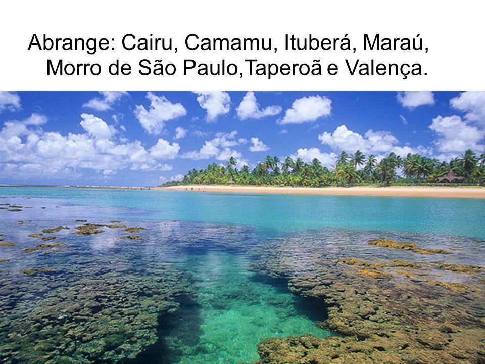 Abrange: Cairu, Camamu, Ituberá, Maraú, Morro de São Paulo,Taperoã e Valença.