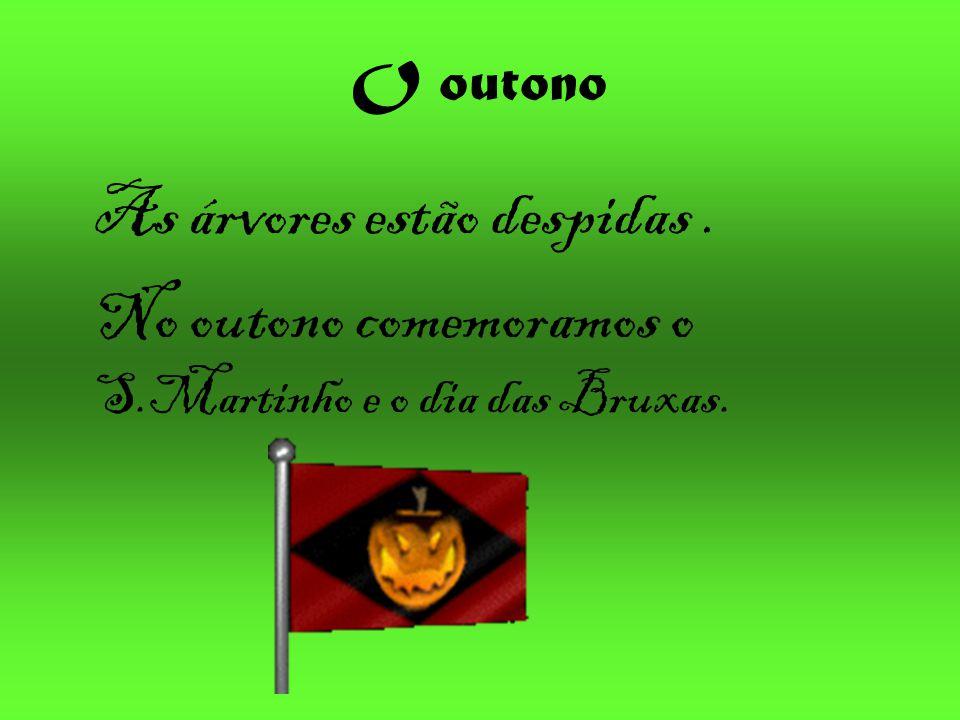 O outono As árvores estão despidas. No outono comemoramos o S.Martinho e o dia das Bruxas.