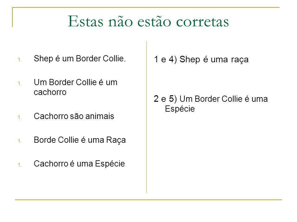 Estas não estão corretas 1. Shep é um Border Collie.
