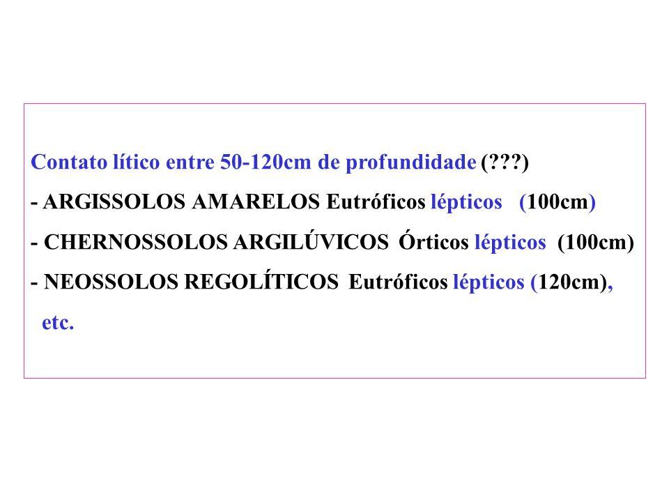 Contato lítico: (pouco interesse nos solos abaixo, pois contato lítico dentro dos 50 cm iniciais) - NEOSSOLOS LITÓLICOS - CHERNOSSOLOS RÊNDZICOS Lític