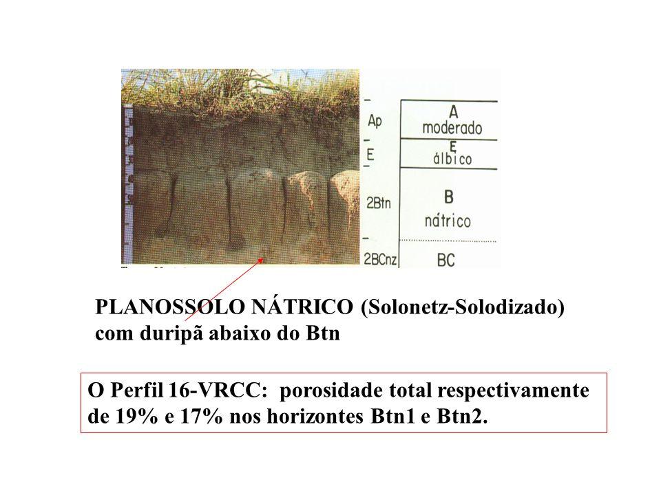 Menor interesse nos PLANOSSOLOS NÁTRICOS? PLANOSSOLOS NÁTRICOS Sálicos duripânicos : 120cm PLANOSSOLOS NÁTRICOS Órticos duripânicos: 120 cm