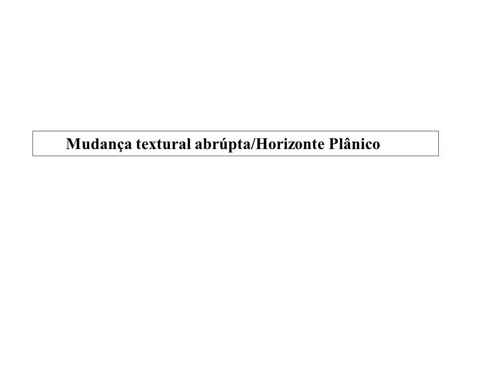 PLANOSSOLO NÁTRICO (Solonetz-Solodizado) com duripã abaixo do Btn O Perfil 16-VRCC: porosidade total respectivamente de 19% e 17% nos horizontes Btn1