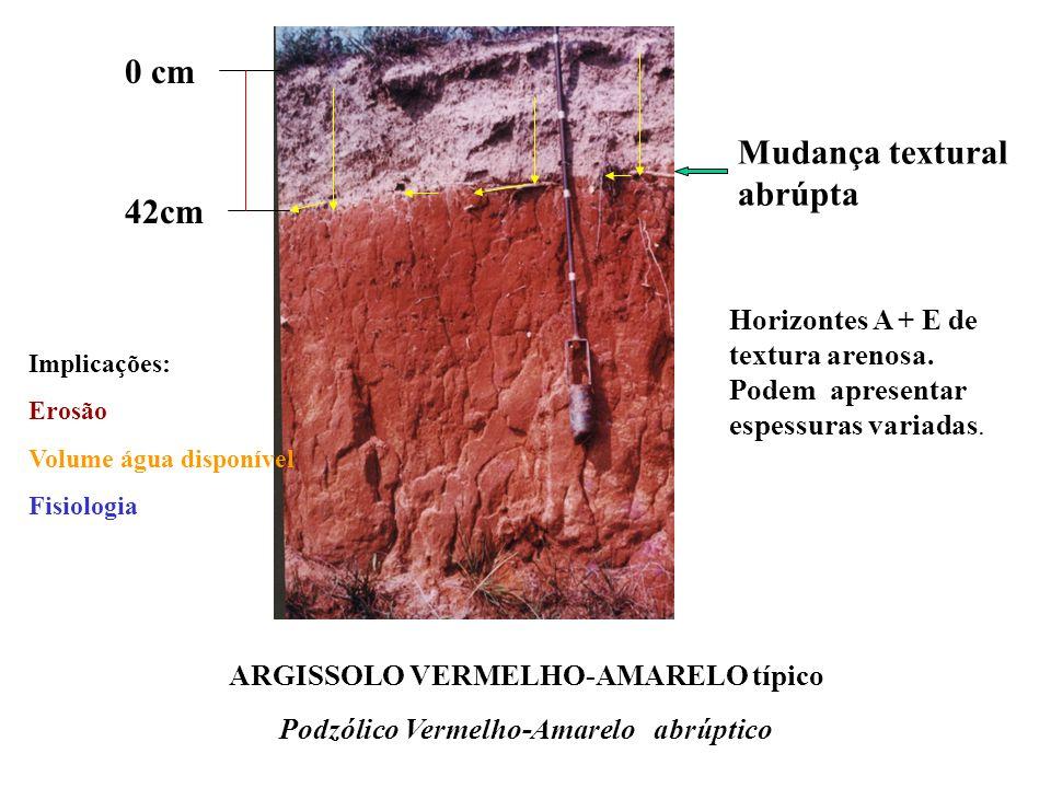 Mudança textural abrúpta/Horizonte Plânico