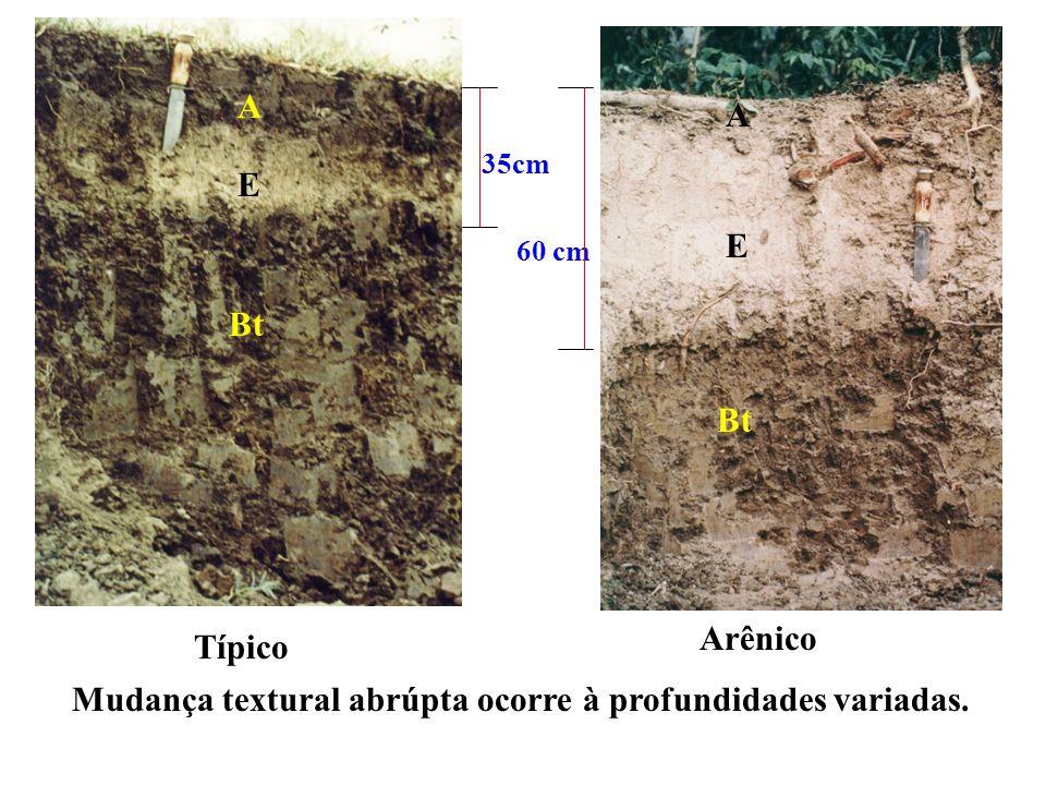 Mudança textural abrúpta ocorre à profundidades variadas: 7 cm (PLANOSSOLO-Perfil BA-310) > 2 m (ARGISSOLO, IAC, São Paulo)