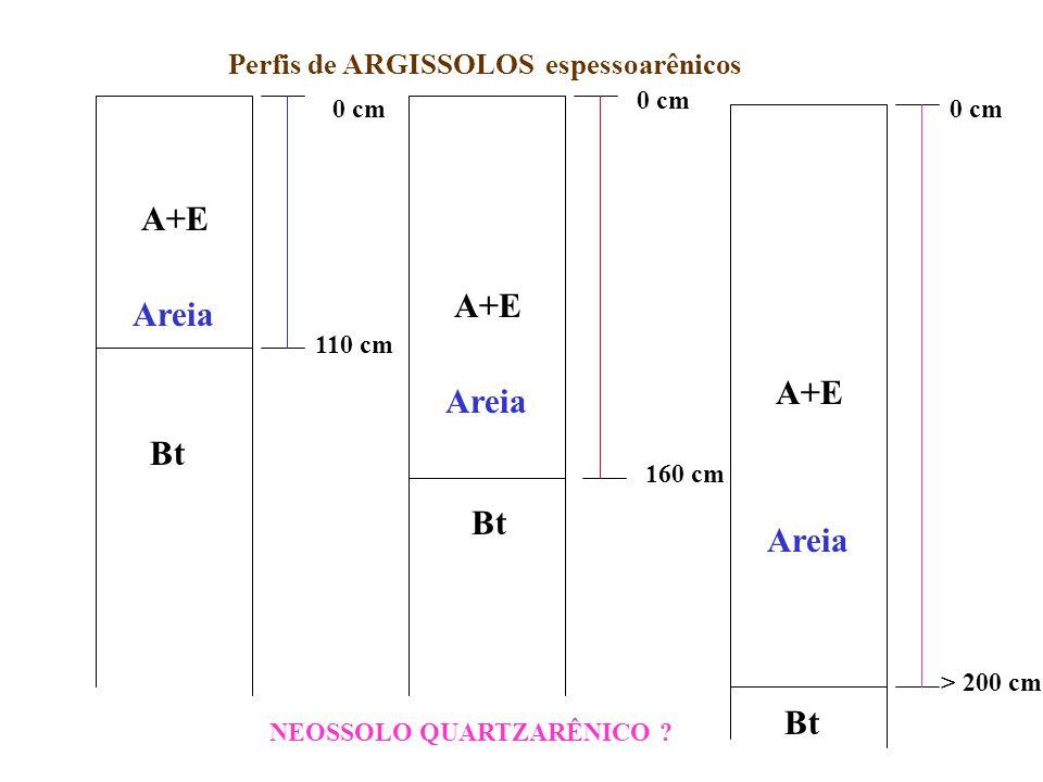 60 cm 90 cm ARGISSOLOS VERMELHO-AMARELOS arênicos