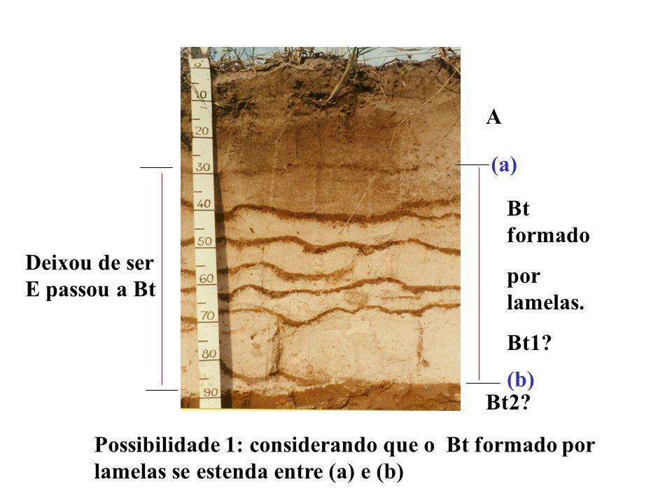 Será considerado como B textural a ocorrência de lamelas, de textura franco arenosa ou mais fina que, em conjunto, perfaçam 15 cm ou mais de espessura