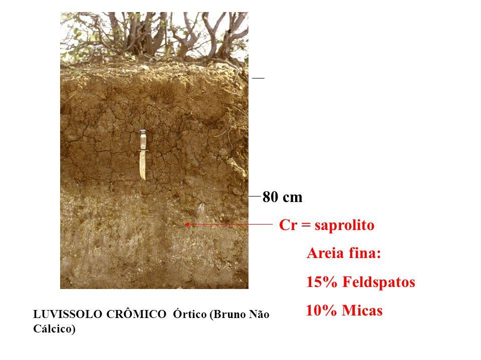 Por ser material relativamente pouco intemperizado é comum (nem sempre) o saprolito apresentar significativos teores de minerais primários fácilmente