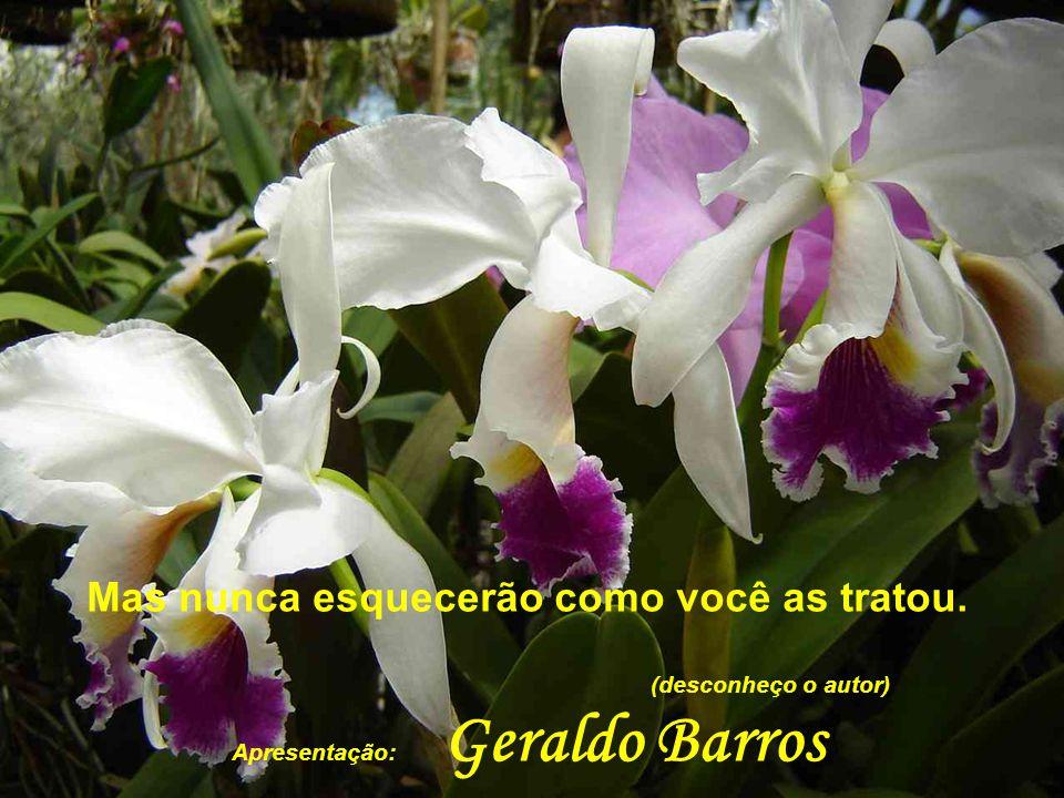 Mas nunca esquecerão como você as tratou. (desconheço o autor) Apresentação: Geraldo Barros