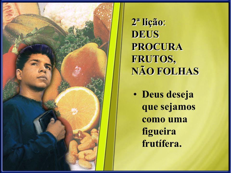 2ª lição: DEUS PROCURA FRUTOS, NÃO FOLHAS Deus deseja que sejamos como uma figueira frutífera.