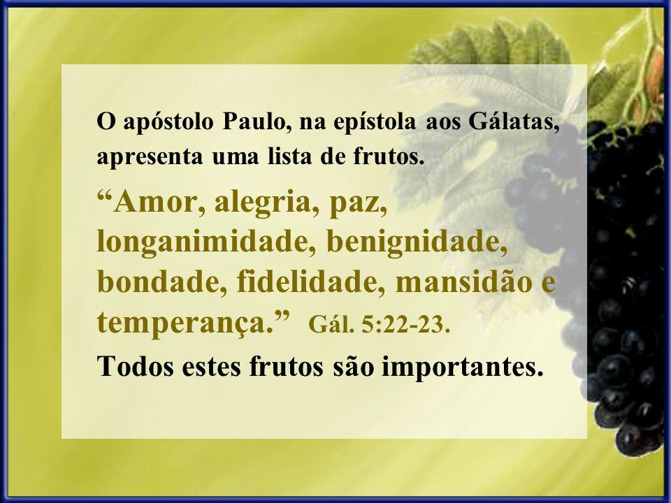 O apóstolo Paulo, na epístola aos Gálatas, apresenta uma lista de frutos. Amor, alegria, paz, longanimidade, benignidade, bondade, fidelidade, mansidã