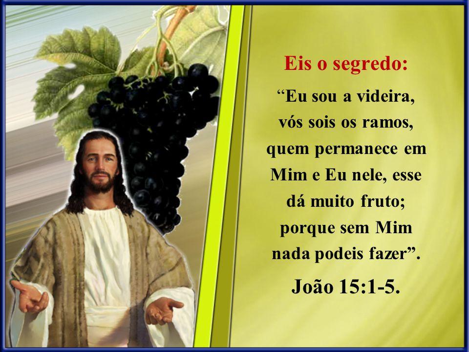 Eis o segredo: Eu sou a videira, vós sois os ramos, quem permanece em Mim e Eu nele, esse dá muito fruto; porque sem Mim nada podeis fazer. João 15:1-