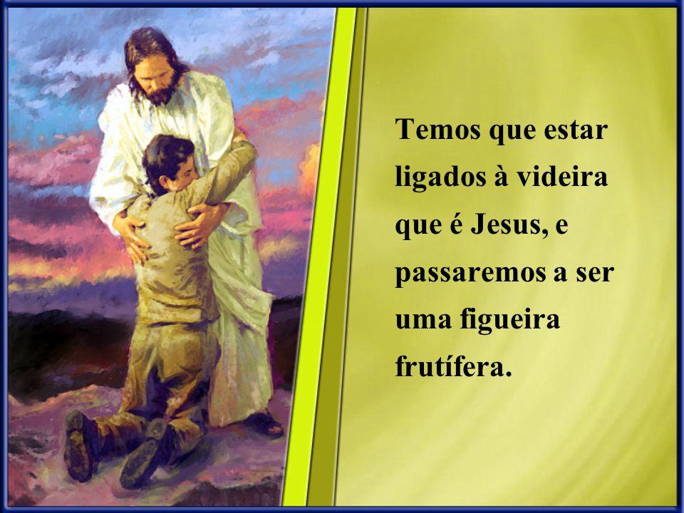 Temos que estar ligados à videira que é Jesus, e passaremos a ser uma figueira frutífera.