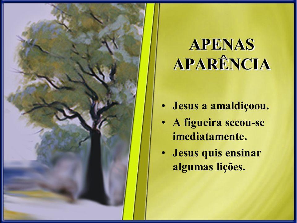 APENAS APARÊNCIA Jesus a amaldiçoou. A figueira secou-se imediatamente. Jesus quis ensinar algumas lições.