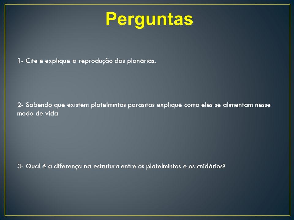 Perguntas 1- Cite e explique a reprodução das planárias.