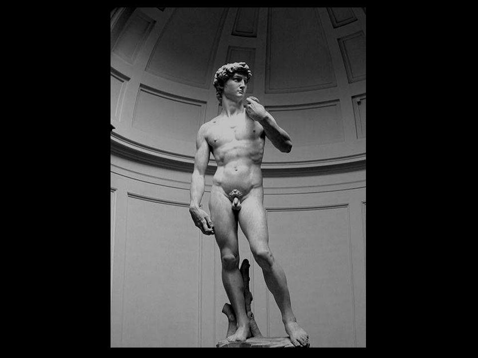 Michelangelo esculpiu o Davi entre 1501 e 1504 por encargo da Cooperativa dos Mercadores de Lã de Florença. Para sua realização, empregou um bloco de