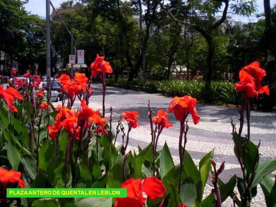 CATEDRAL DE RIO DE JANEIRO