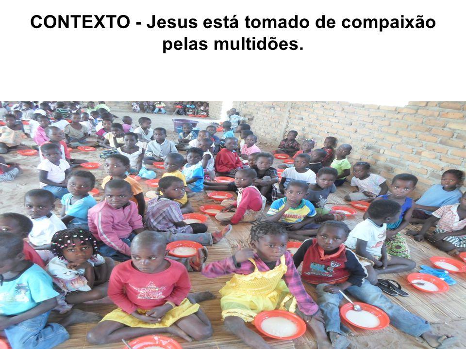CONTEXTO - Jesus está tomado de compaixão pelas multidões. Jesus está falando com os discípulos Jesus está ensinando como orar