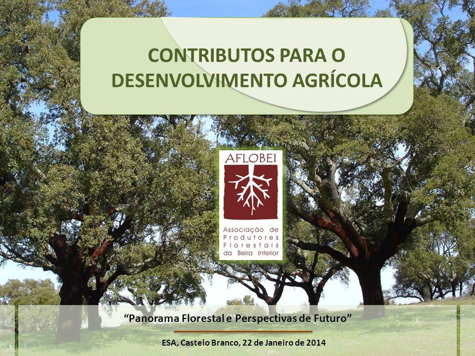 CONTRIBUTOS PARA O DESENVOLVIMENTO AGRÍCOLA ESA, Castelo Branco, 22 de Janeiro de 2014 Panorama Florestal e Perspectivas de Futuro