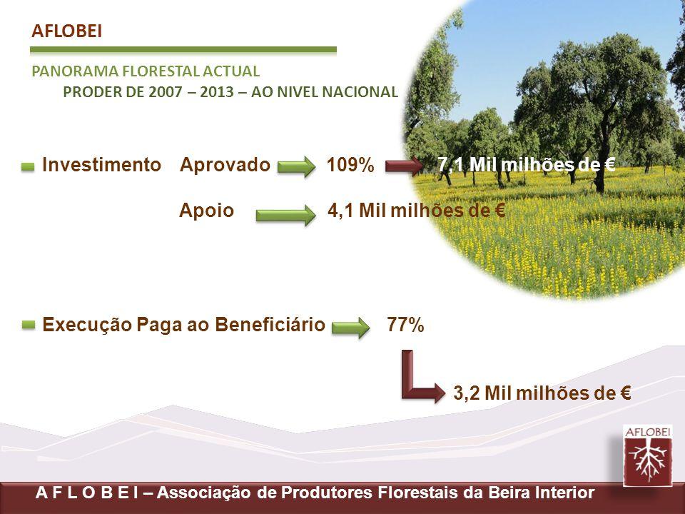 AFLOBEI PANORAMA FLORESTAL ACTUAL PRODER DE 2007 – 2013 – AO NIVEL NACIONAL A F L O B E I – Associação de Produtores Florestais da Beira Interior Inve