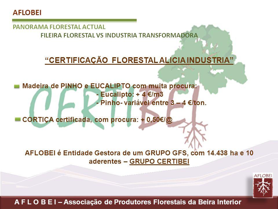 AFLOBEI PANORAMA FLORESTAL ACTUAL FILEIRA FLORESTAL VS INDUSTRIA TRANSFORMADORA A F L O B E I – Associação de Produtores Florestais da Beira Interior