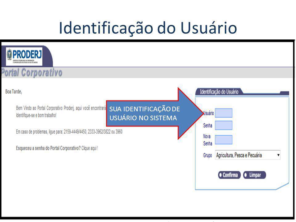 SUA IDENTIFICAÇÃO DE USUÁRIO NO SISTEMA
