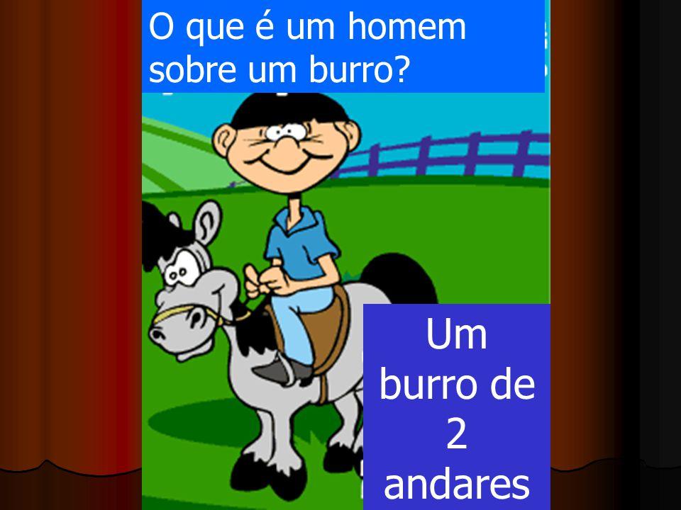 O que é um homem sobre um burro? Um burro de 2 andares