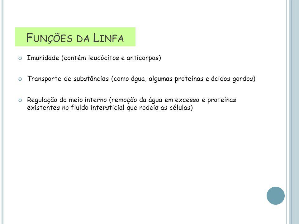 Imunidade (contém leucócitos e anticorpos) Transporte de substâncias (como água, algumas proteínas e ácidos gordos) Regulação do meio interno (remoção