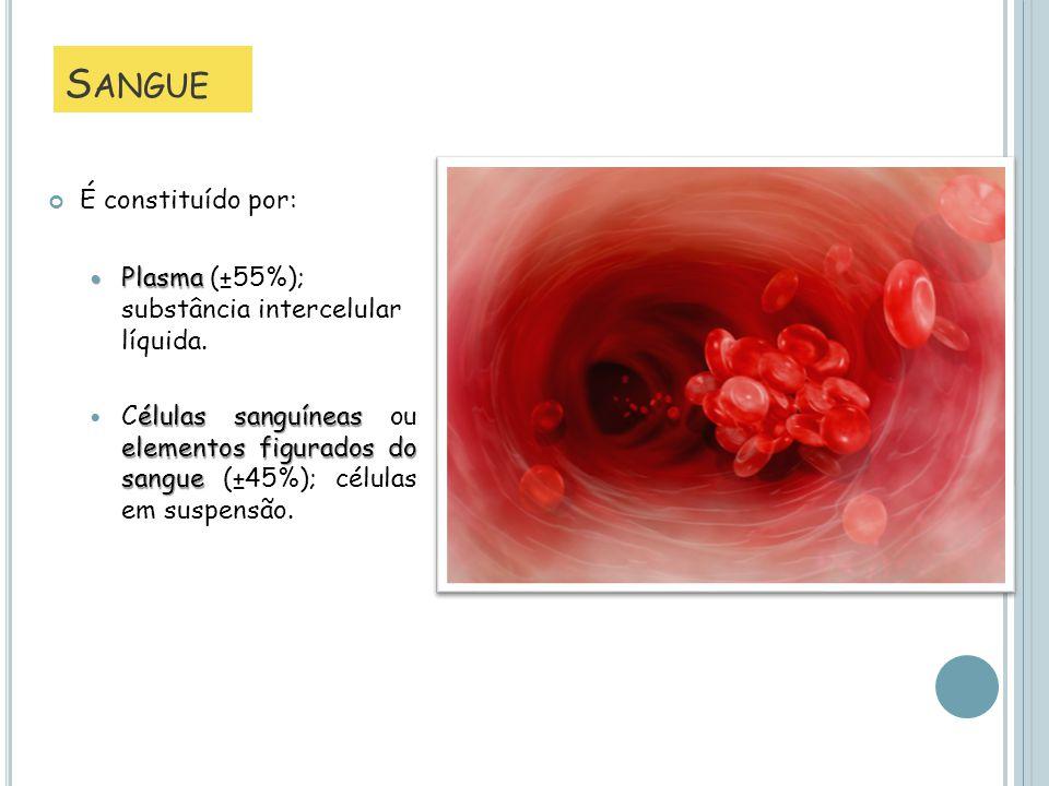 S ANGUE É constituído por: Plasma Plasma (±55%); substância intercelular líquida. élulas sanguíneas elementos figurados do sangue Células sanguíneas o