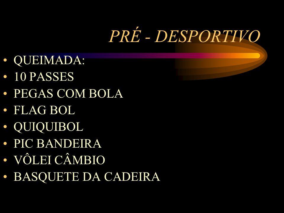 PRÉ - DESPORTIVO QUEIMADA: 10 PASSES PEGAS COM BOLA FLAG BOL QUIQUIBOL PIC BANDEIRA VÔLEI CÂMBIO BASQUETE DA CADEIRA