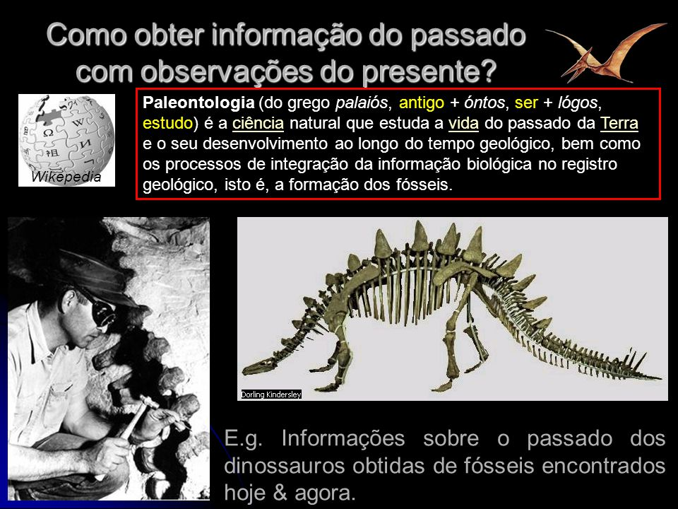 4 Como obter informação do passado com observações do presente? Paleontologia (do grego palaiós, antigo + óntos, ser + lógos, estudo) é a ciência natu