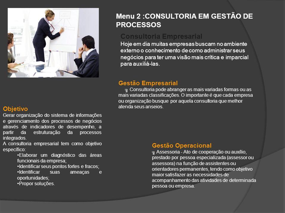 Menu 2 :CONSULTORIA EM GESTÃO DE PROCESSOS Objetivo Gerar organização do sistema de informações e gerenciamento dos processos de negócios através de i