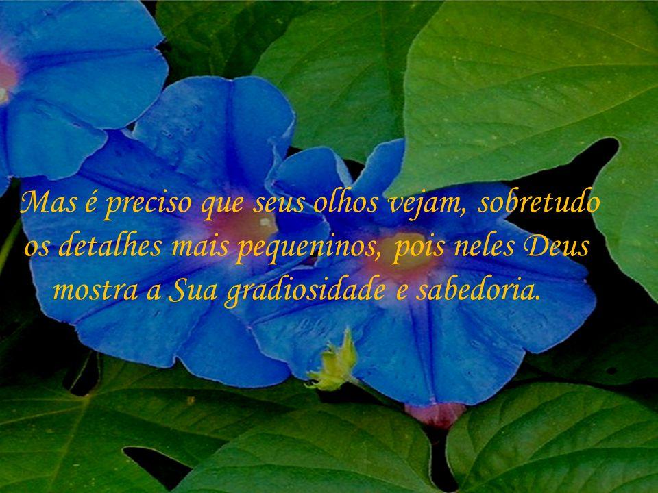 Onde habita, o homem pode aprender e ser feliz, ter esperança e entender a vontade divina.