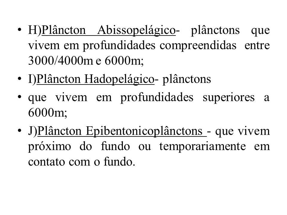 H)Plâncton Abissopelágico- plânctons que vivem em profundidades compreendidas entre 3000/4000m e 6000m; I)Plâncton Hadopelágico- plânctons que vivem e