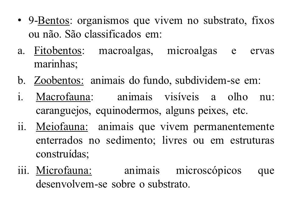 9-Bentos: organismos que vivem no substrato, fixos ou não. São classificados em: a.Fitobentos: macroalgas, microalgas e ervas marinhas; b.Zoobentos: a