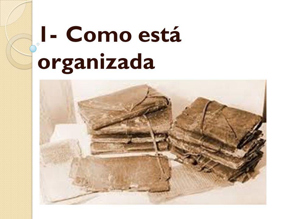 1-Como está organizada