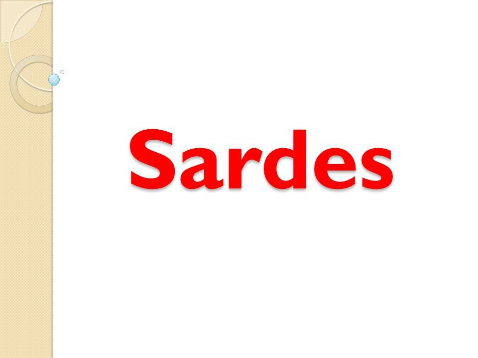 Sardes