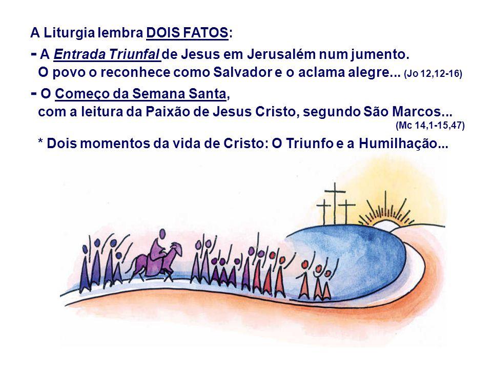 A Liturgia lembra DOIS FATOS: - A Entrada Triunfal de Jesus em Jerusalém num jumento.