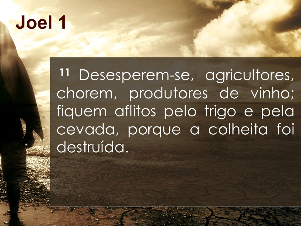 Joel 1 11 Desesperem-se, agricultores, chorem, produtores de vinho; fiquem aflitos pelo trigo e pela cevada, porque a colheita foi destruída.
