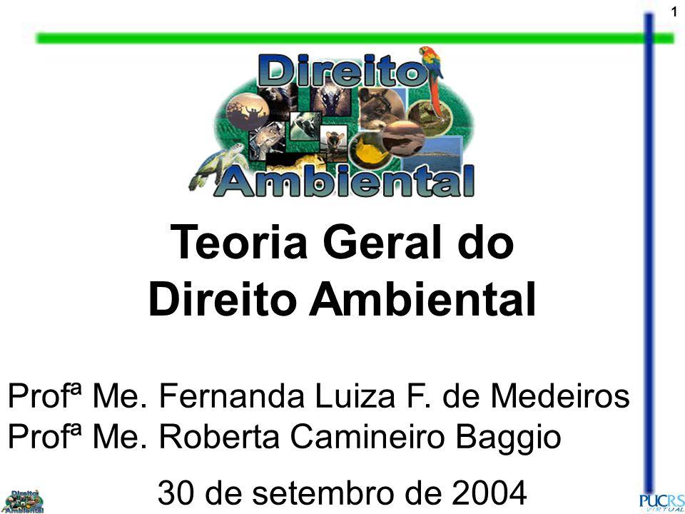 1 Teoria Geral do Direito Ambiental 30 de setembro de 2004 Profª Me.