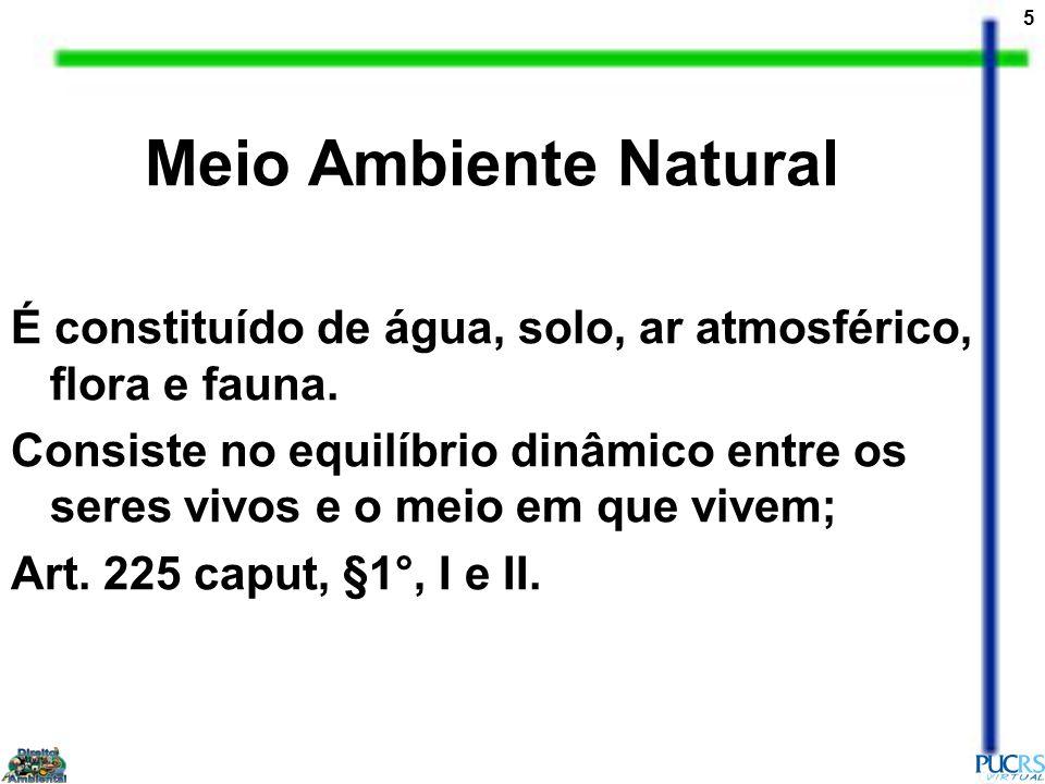 5 Meio Ambiente Natural É constituído de água, solo, ar atmosférico, flora e fauna.