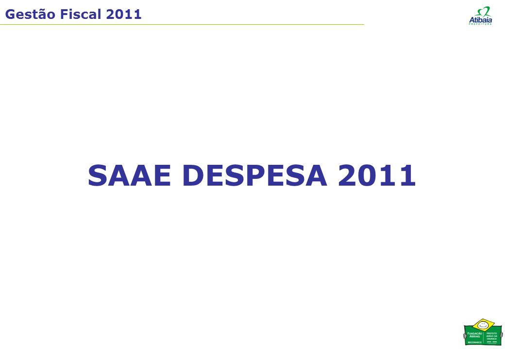 SAAE DESPESA 2011