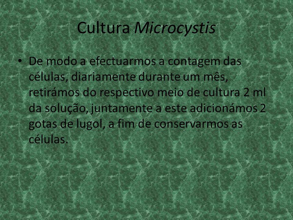 Cultura Microcystis De modo a efectuarmos a contagem das células, diariamente durante um mês, retirámos do respectivo meio de cultura 2 ml da solução,