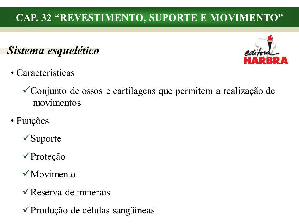 CAP. 32 REVESTIMENTO, SUPORTE E MOVIMENTO Sistema esquelético Características Conjunto de ossos e cartilagens que permitem a realização de..movimentos