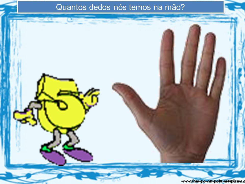 Quantos dedos nós temos na mão?