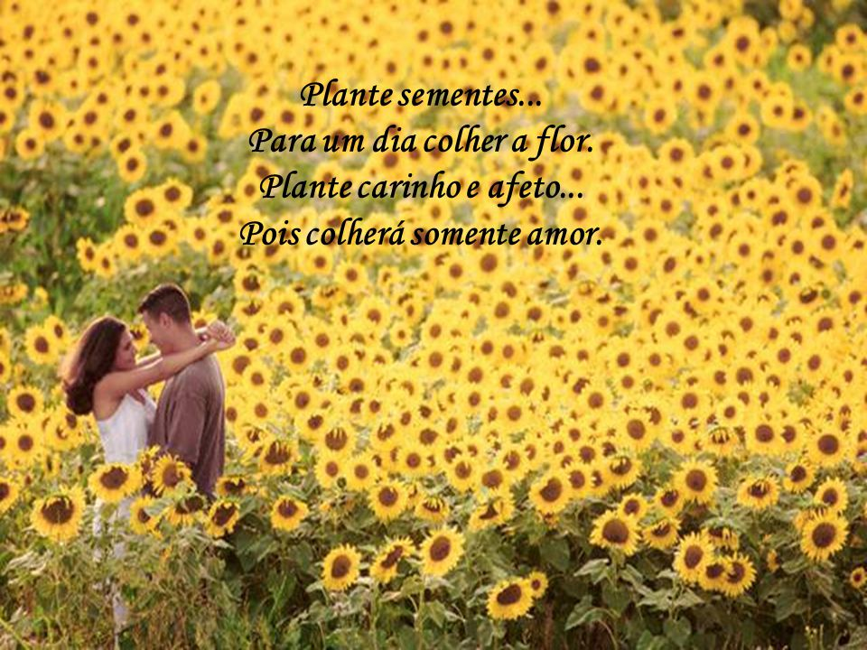 Como é lindo saber que pensamos juntos! Acordamos com pensamentos unidos, vivemos o dia a dia como pássaros livres, e só queremos viver, ser feliz e a