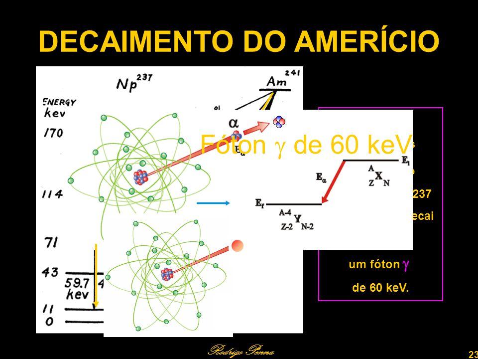 Rodrigo Penna 23 DECAIMENTO DO AMERÍCIO 84,2% dos decaimentos levam ao ao Neptúnio – 237 excitado, que decai emitindo um fóton de 60 keV.